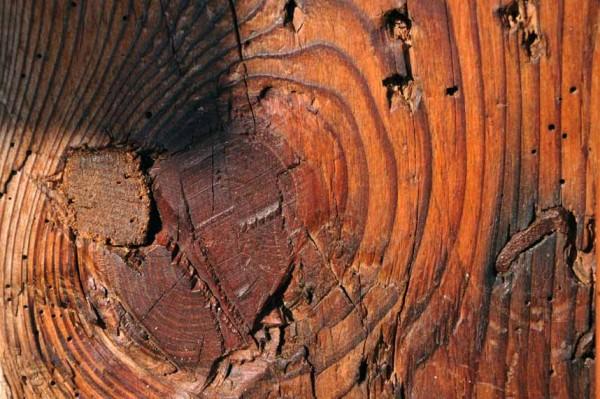Stare drewno po zaimpregnowaniu pokostem lnianym